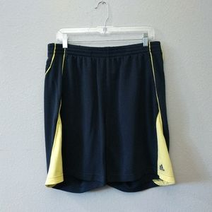 Adidas Blue Green Gym Athletic Shorts